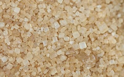 Novasep and Bonumose announce a strategic collaboration for high-purity rare sugars