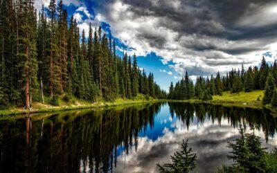 Methangewinnung aus Seen mithilfe von Membrankontaktoren