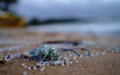 FILTECH 2022: Innovation Forum adresses pollution through microplastics