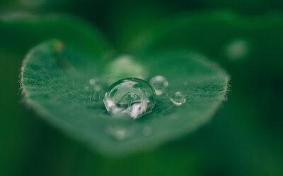 IndustrieTage Wassertechnik geht in die achte Runde